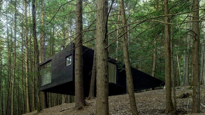 Casa entre medio de árboles / Jacobschang Architecture